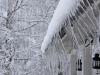 Vinter i Skärmarboda