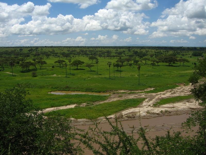 zanzibarTanzania200701 (46)