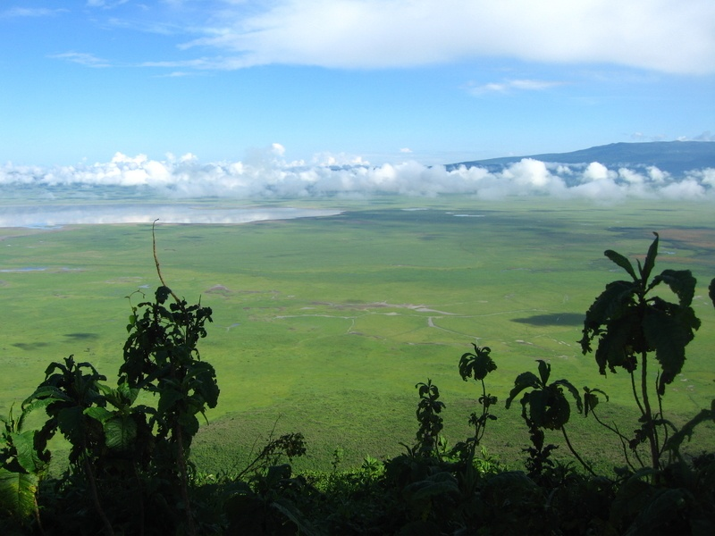 zanzibarTanzania200701 (9)